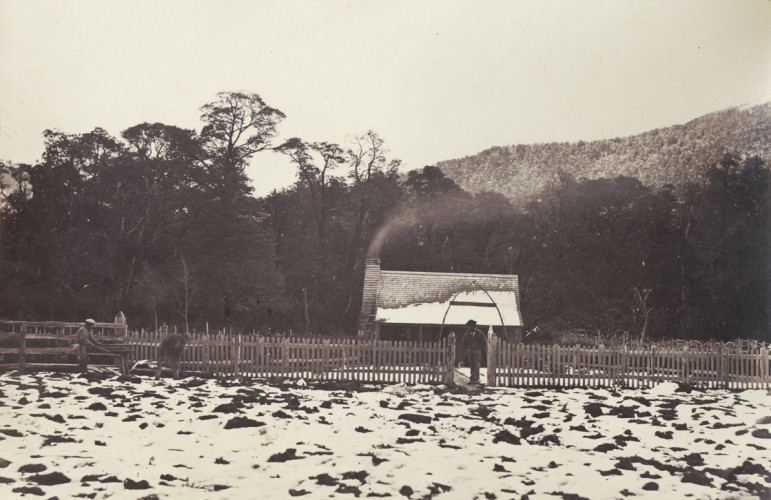 Jimmy Robinson's, Alford Forest, Ashburton