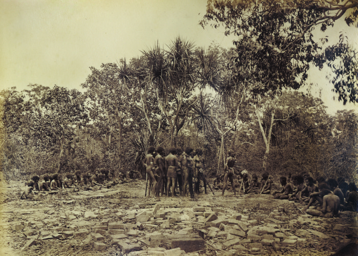 Native corroboree, Port Essington, November 1877