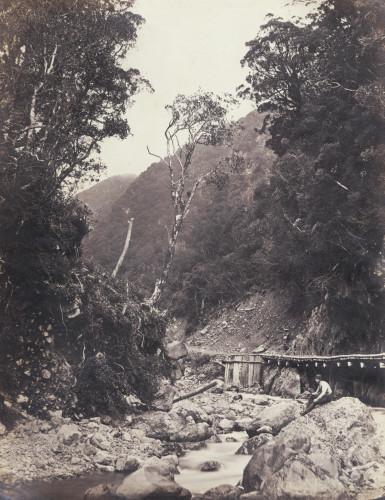Otira Gorge, West Coast Road